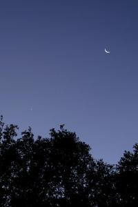 Congiunzione Venere - Luna