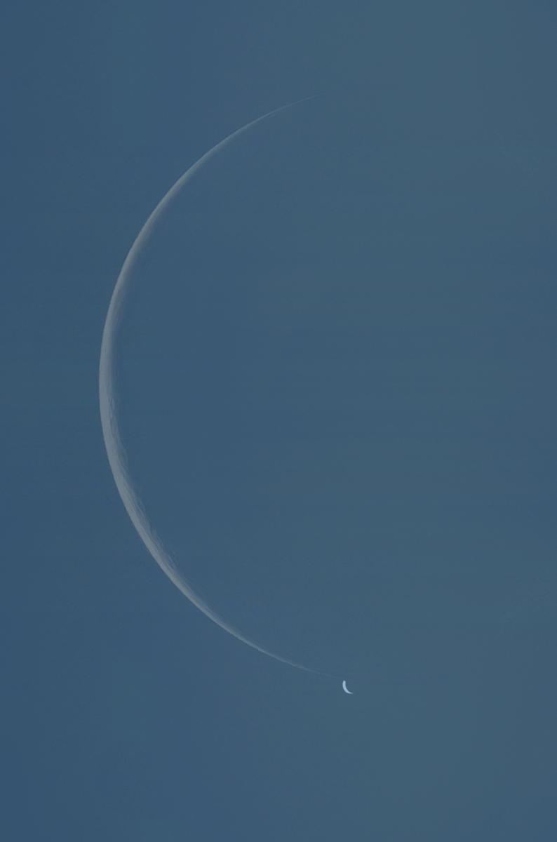 Occultazione Luna - Venere 19 Giugno 2020